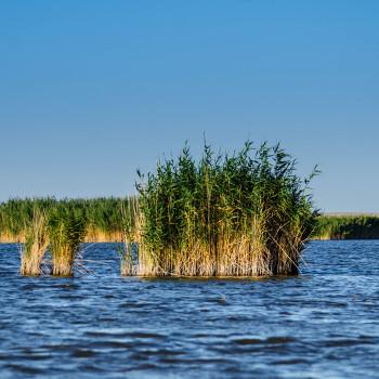 Jurilovca - Delta Dunarii
